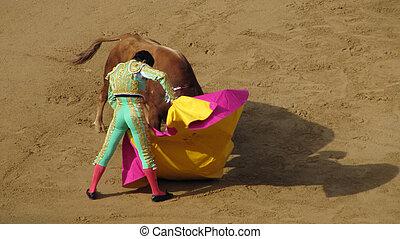 Torero in Pamplona - Pamplona, Spain-July 9, 2009: El Cid...