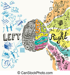 Brain hemispheres sketch - Brain left analytical and right...