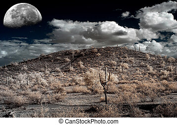 Sonora Desert Moon - Moon Desert storm over the southwestern...