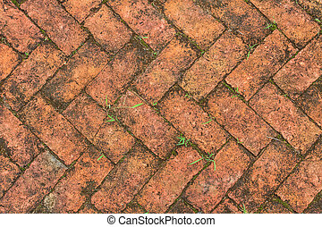old red brick floor with moss in garden