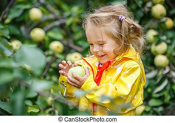 Little girl in the apple garden - Little girl holding apple...
