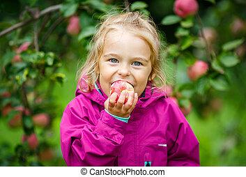 Little girl in the apple garden - Little girl biting apple...