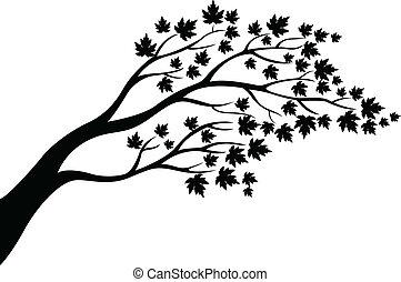 Érable, arbre, silhouette