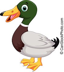 Cute cartoon duck - Vector illustration of Cute cartoon duck...