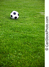Soccer Ball On A Grassy Field - Photo Of A Soccer Ball On A...
