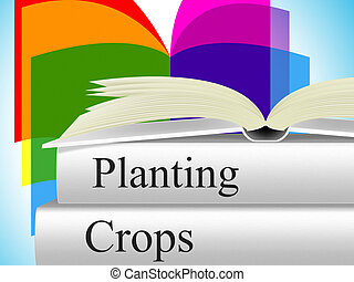 Planting Crops Indicates Agrarian Cultivation And Field -...