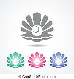 vecteur, coquille, icône, perle, différent,...