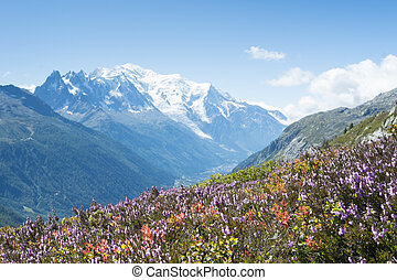 Mont Blanc - Flowery meadow in French countryside with Mont...