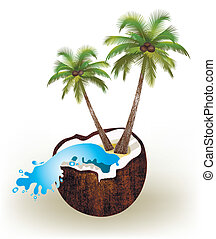 Palms and coconut