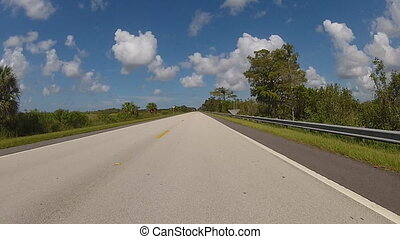 Driving on road in Florida - Panoramic real-time view of...