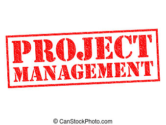 PROJECT MANAGEMENT red Rubber Stamp over a white background.