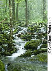 Stream, Spring Landscape, GSMNP - Stream, Spring Landscape,...