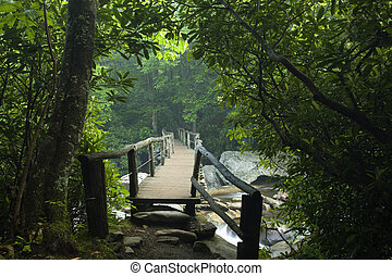 Footbridge, Chimney Tops Trail, GSMNP - Footbridge, Chimney...