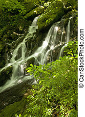 Waterfalls, Tremont, GSMNP, TN - Waterfalls, Tremont, Great...
