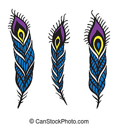 Peacock Feather set - Vintage Feather vector set Hand drawn...
