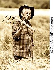 Old peasant in barley field - Old photo of happy senior...