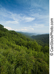 Great Smoky Mtns from Newfound Gap Rd - Great Smoky Mtns,...