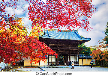 Jingo-ji is a Buddhist temple in Kyoto - Kyoto, Japan -...