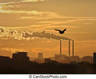 Black toxic smoke from chemical plants, sunset