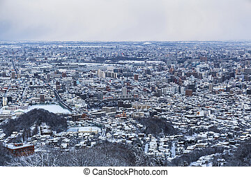 Sapporo city - View of Sapporo city in winter