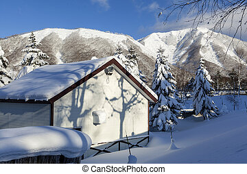 Japanese house with snow on the roof, Hokkaido, Japan