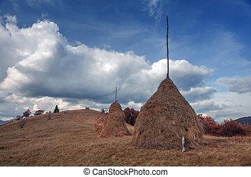 haystack - alone haystack near autumn forest