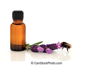 Bumble Bee and Lavender Herb Flowers