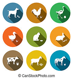 Pets flat icon collection - Pets icon set on a colored...