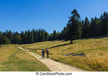 Hikers on a foot path - Hikers are walking on a foot path in...