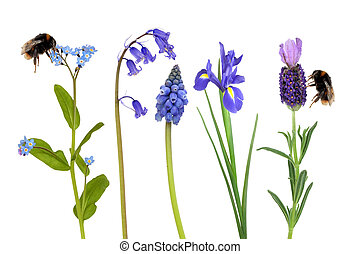 Bumble Bees and Spring Flowers - Selection of blue flowers...
