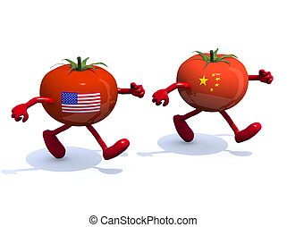 Chinese and American tomato that run