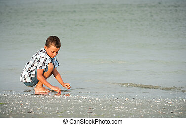 Child on sea shore - Cute kid picking shells on the sea...