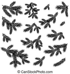 Christmas spruce tree branches black silhouettes