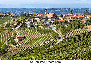 Vineyards and small town on the hill in Italy. - Vineyards...