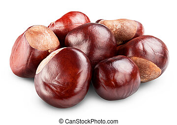 Chestnut - isolated Chestnut on white background. Clipping...