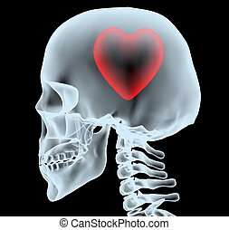X-ray of a head with the heart instead of the brain, 3d...