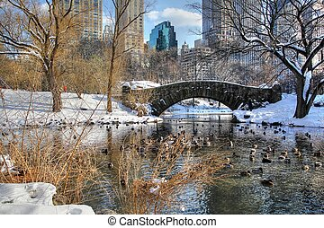 Central Park winter 160 - Winter time view of the bridge...
