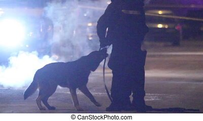 Silhouette of K9 police unit - K9 unit dog playing in leashe...