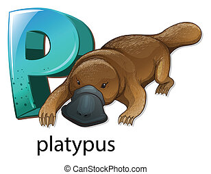 A letter P for platypus - Illustration of a letter P for...