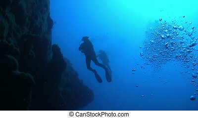 Diver Swim over Coral Reefs