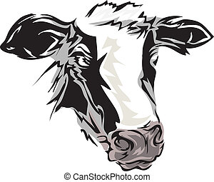 Cow - Illustration Featuring a Cow