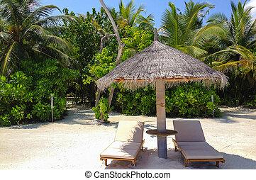 Maldives - The Maldives Beach Landscape view