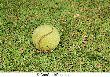 beisball, pasto o césped