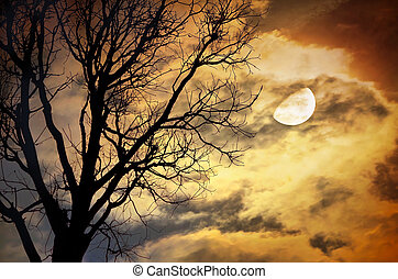 Dead Tree against moon and clouds - Silhouette of dead Tree...