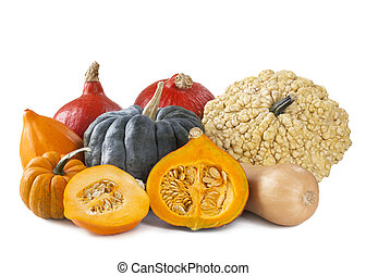 Squashes - Group of fresh squashes isolated on a white...