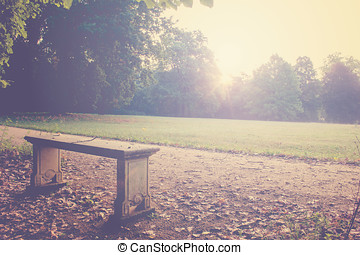 Bench in the Morning Light