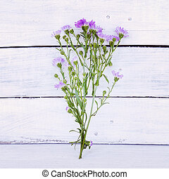 flower on wooden table near wall