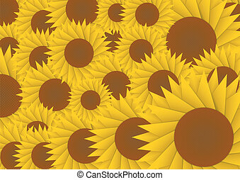 Sun flower abstract background