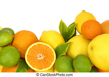 Fresh citrus fruit on white background