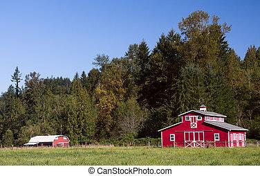 rojo, graneros, verano